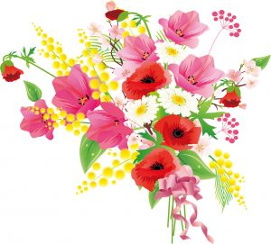 flower2534